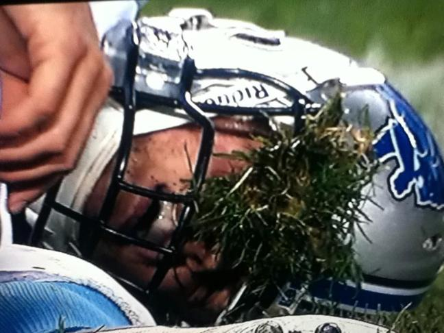 The Face of NFL Mediocrity This Year...Grass Face
